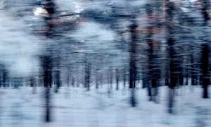 Vinterreise