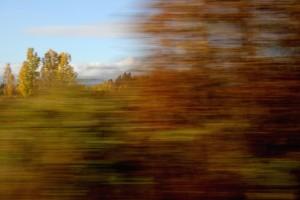 Høsten følger vognene